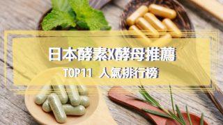 日本酵素x酵母推薦
